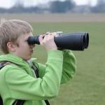 Errores al elegir buscador de alumnos clases particulares